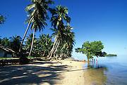 Outrigger Canoe, Walung Village, Kosrae, FSM, Micronesia