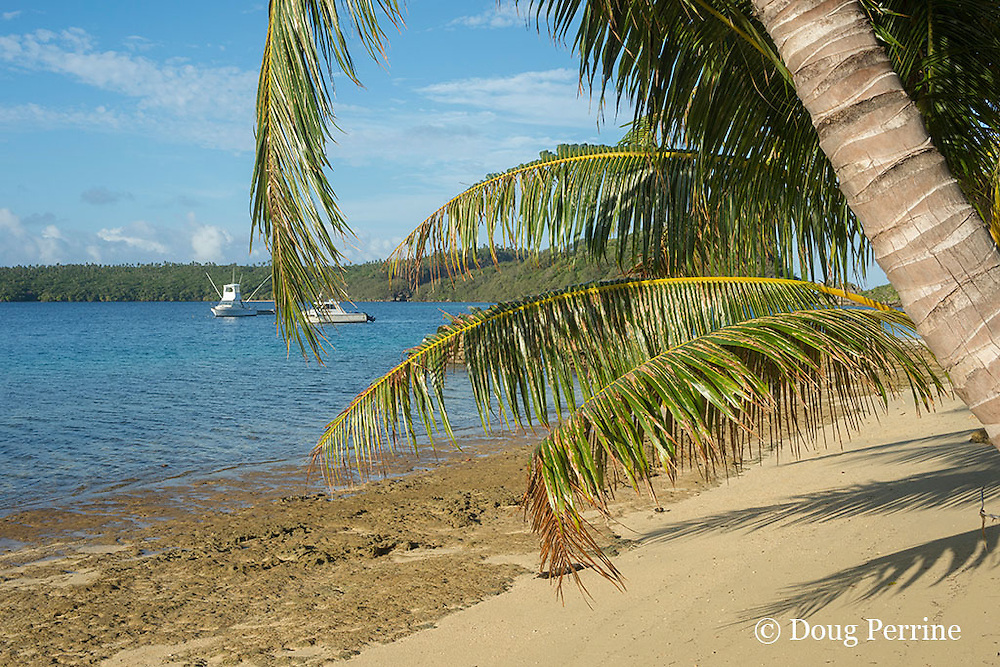 beach at Ika Lahi Lodge, with boats Reel Addiction and Reel Connection in background, Hunga Island, Vava'u, Kingdom of Tonga, South Pacific