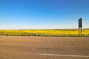 Alberta-Saskatchewan border, near Macklin