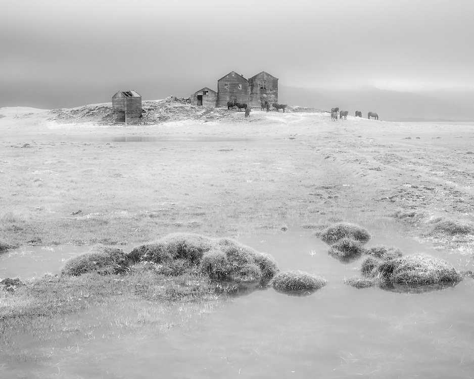 Derelict house,  south Iceland