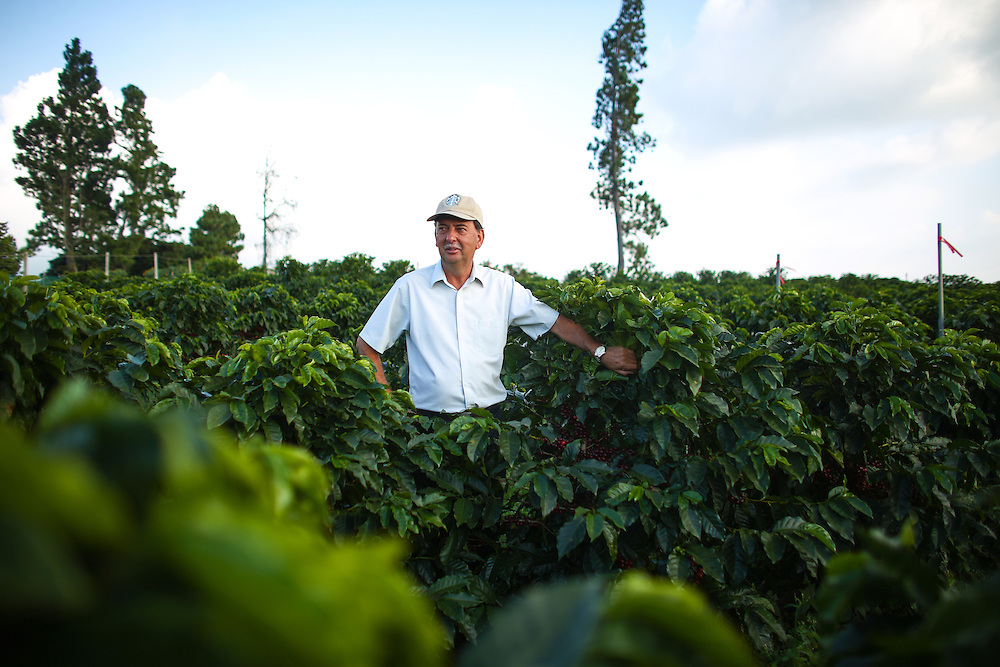 Carlos Mario Rodriguez, director global agronomy, poses with coffee trees at Hacienda Alsacia during the 2016 Starbucks Origin Experience for Partners. Photographed in January 2016. (Joshua Trujillo, Starbucks)