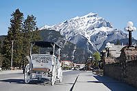 Horse Carriage Traveling Down Banff Avenue with Cascade Mountain in Background, Banff National Park, Alberta, Canada