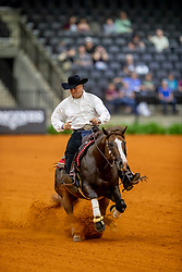Fonck Bernard, BEL, What A Wave<br /> World Equestrian Games - Tryon 2018<br /> © Hippo Foto - Dirk Caremans<br /> 12/09/2018
