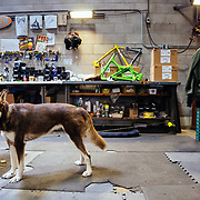 Bike building being supervised by crew Husky.