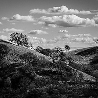 Mt Diablo Landscapes