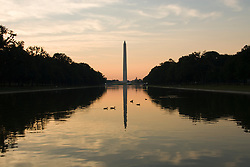 Washington DC; USA: Ducks swimming on the Reflecting Pool on the Mall, with the Washington Monument in the background, at dawn.Photo copyright Lee Foster Photo # 5-washdc82622