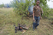 Apprehended poachers assisting Mara Conservancy rangers  in burning their supplies and meat<br /> Serengeti National Park, Tanzania