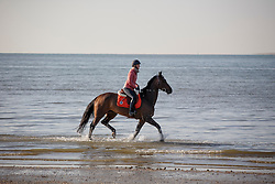 Du Couëdic Laetitia, (FRA), Cheyenne 111 Z  <br /> Sunday morning beach training - La Baule 2016<br /> © Hippo Foto - Dirk Caremans<br /> 15/05/16