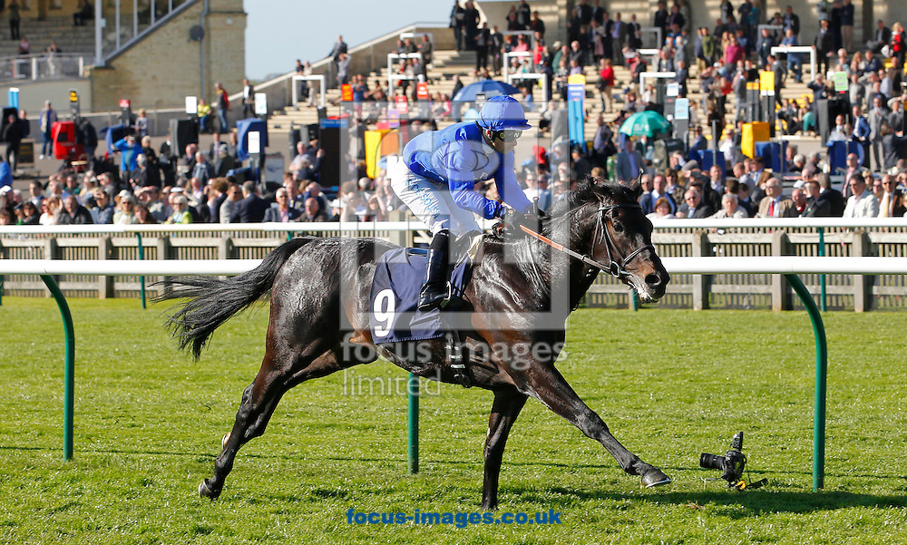 Picture by John Hoy/Focus Images Ltd +44 7516660607<br /> 16/04/2014<br /> Silvestre De Sousa riding True Story winning the ebm-papst Feilden Stakes (Listed Race) at Newmarket Rowley, Newmarket