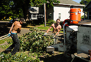 2010/07/09 -- Cottonwood Tree -- Workers from All Around Arbor fell a black cottonwood tree July 9 in the St. Johns neighborhood of North Portland. The tree threatened a retaining wall at its base and was considered a nuisance by neighbors. (Photo by Matthew Ginn © 2010)