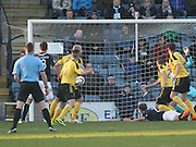 Mark Burchill heads home the only goal of the game - Dundee v Livingston,  SPFL Championship at Dens Park<br /> <br />  - &copy; David Young - www.davidyoungphoto.co.uk - email: davidyoungphoto@gmail.com
