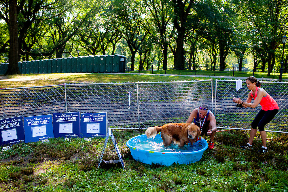 NEW YORK, N.Y. - JULY 19, 2015: Papiko cools down after running alongside his owner Murat Beyazit during the American Medical Center Doggy Dash, where dogs run the last 5 miles with their owners, during the 15th Annual Panasonic New York City Triathlon. CREDIT: Sam Hodgson for The New York Times
