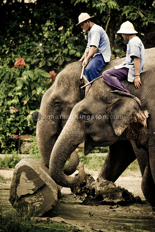 Mahouts give a demonstration of how asian elephants are used for logging and other heavy work to tourists visiting the Pattaya Elephant Village, Pattaya, Thailand.  The village was opened in 1973 as a sanctuary for former working elephants that can no longer be used for extended heavy work due to injury or ill health.  A popular tourist attraction, fee's paid by tourists support the upkeep of the elephants.