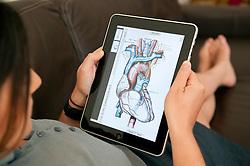 close up of woman using iPad digital tablet computer to study human anatomy using Grey's Anatomy medical app