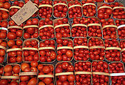 Oraganic tomatoes in baskets at market<br /> <br /> Ontario<br /> Canada