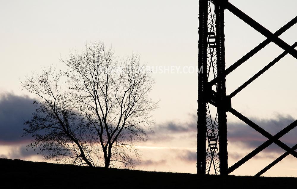 Salisbury Mills, NY - A tree next to the Moodna Viaduct at twilight on Nov. 28, 2009.