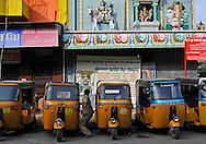 17/12/08 - PONDICHERY - TAMIL NADU - INDIA - Hindu Temple in Pondicherry - Photo Jerome CHABANNE