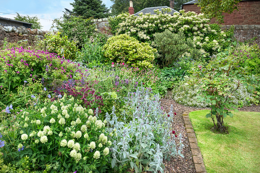 Mixed summer borders in an Scottish country garden.