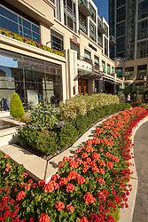 United States, Washington, Bellevue, The Bravern shopping area
