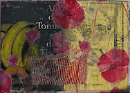 Amapola, 2012  42  x 29  cm Mixed media Paolo Moretto/Mauricio Bustamante