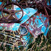Abandoned car, Invercargill, New Zealand. Photo by  Jen Klewitz
