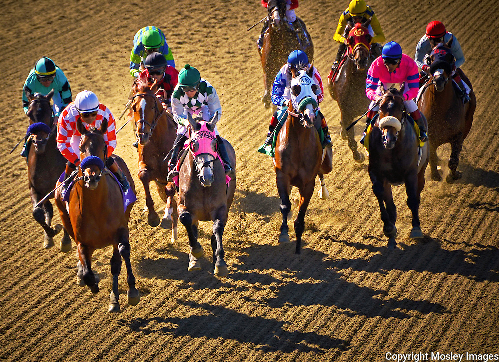 Thoroughbred Thunder - Race Judge's Overhead view at Santa Anita Park in Arcadia, California. Photo by Mosley Images.