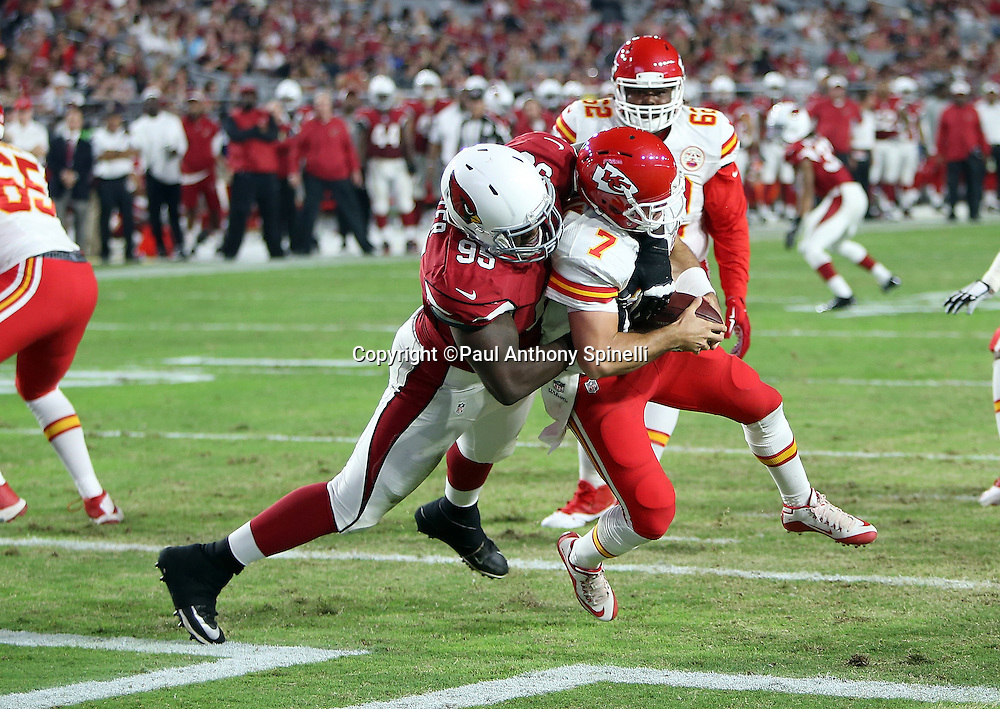 Kansas City Chiefs quarterback Aaron Murray (7) gets sacked for a safety by Arizona Cardinals rookie defensive tackle Rodney Gunter (95) that cuts the Chiefs lead to 31-12 in the fourth quarter during the 2015 NFL preseason football game against the Arizona Cardinals on Saturday, Aug. 15, 2015 in Glendale, Ariz. The Chiefs won the game 34-19. (©Paul Anthony Spinelli)