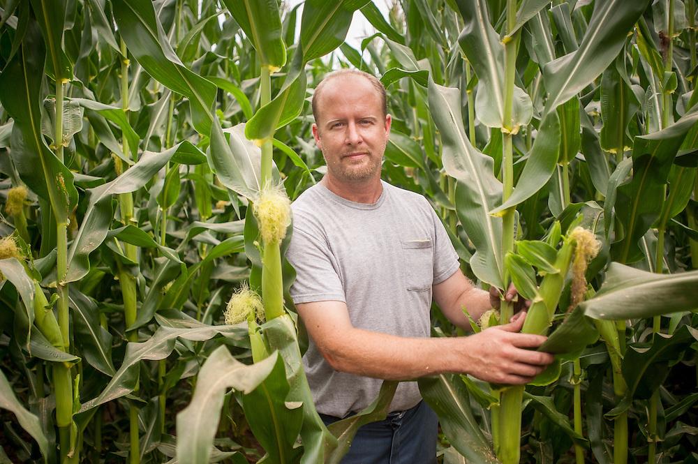 Farmer in Cornfield<br /> Centerville MD