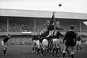 WJ McBride, Ireland, and PK Stagg, Scotland, jump for possession in a line out,..Irish Rugby Football Union, Ireland v Scotland, Five Nations, Landsdowne Road, Dublin, Ireland, Saturday 26th February, 1966,.26.2.1966, 2.26.1966,..Referee- D M Hughes, Welsh Rugby Football Union, ..Score- Ireland 3 - 11 Scotland, ..Irish Team, ..T J Kiernan,  Wearing number 15 Irish jersey, Full Back, Cork Constitution Rugby Football Club, Cork, Ireland,..W R Hunter, Wearing number 14 Irish jersey, Right Wing, C I Y M S Rugby Football Club, Belfast, Northern Ireland, ..M K Flynn, Wearing number 13 Irish jersey, Right Centre, Wanderers Rugby Football Club, Dublin, Ireland, ..J C Walsh,  Wearing number 12 Irish jersey, Left Centre, Sundays Well Rugby Football Club, Cork, Ireland, ..P J McGrath,  Wearing number 11 Irish jersey, Left Wing, University college Cork Rugby Football Club, Cork, Ireland,  ..C M H Gibson, Wearing number 10 Irish jersey, Stand Off, Cambridge University Rugby Football Club, Cambridge, England, and, N.I.F.C, Rugby Football Club, Belfast, Northern Ireland, ..R M Young, Wearing number 9 Irish jersey, Scrum Half, Queens University Rugby Football Club, Belfast, Northern Ireland,..R A Lamont, Wearing number 8 Irish jersey, Forward, Instonians Rugby Football Club, Belfast, Northern Ireland, ..M G Doyle, Wearing number 7 Irish jersey, Forward, Cambridge University Rugby Football Club, Cambridge, England,..N Murphy, Wearing number 6 Irish jersey, Forward, Cork Constitution Rugby Football Club, Cork, Ireland,..O C Waldron, Wearing number 5 Irish jersey, Forward, Oxford University Rugby Footabll Club, Oxford, England, ..W J McBride, Wearing number 4 Irish jersey, Forward, Ballymena Rugby Football Club, Antrim, Northern Ireland,..R J McLoughlin, Wearing number 3 Irish jersey, Captain of the Irish team, Forward, Gosforth Rugby Football Club, Newcastle, England, ..K W Kennedy, Wearing number 2 Irish jersey, Forward,  C I Y M S Rugby Football Club, Belfast, Northern Ireland, ..S