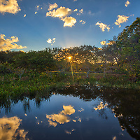 South Florida sunrise photography from nature photographer Juergen Roth showing the waterscape of Wakodahatchee Wetlands in magical sunrise light with a beautiful sunburst. Wako is an amazing nature area for viewing and photographing birds and other wildlife in Florida. <br /> <br /> Florida sunrise photography images are available as museum quality photo prints, canvas prints, wood prints, acrylic prints or metal prints. Fine art prints may be framed and matted to the individual liking and interior design room project needs:<br /> <br /> https://juergen-roth.pixels.com/featured/wakodahatcheen-wetlands-sunrise-magic-juergen-roth.html<br /> <br /> All Florida nature photography images are available for photography image licensing at www.RothGalleries.com. Please contact me direct with any questions or request.<br /> <br /> Good light and happy photo making!<br /> <br /> My best,<br /> <br /> Juergen<br /> Prints: http://www.rothgalleries.com<br /> Photo Blog: http://whereintheworldisjuergen.blogspot.com<br /> Instagram: https://www.instagram.com/rothgalleries<br /> Twitter: https://twitter.com/naturefineart<br /> Facebook: https://www.facebook.com/naturefineart
