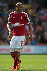 Nottingham Forest's Adlene Guedioura  - Photo mandatory by-line: Nigel Pitts-Drake/JMP - Tel: Mobile: 07966 386802 25/08/2013 - SPORT - FOOTBALL -Vicarage Road Stadium - Watford -  Watford v Nottingham Forest - Sky Bet Championship