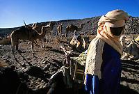 Taureg and camels, Algeria, Al Hoggar