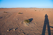 Harsh Namibian desert light, Namibia Shadow cast by the photographer (Amos Gal RIP) on the ground
