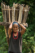 Adi Gallong carrying wood<br /> Adi Gallong Tribe<br /> Arunachal Pradesh<br /> North East India