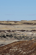 Expansive vistas extend as far as the eye can see, rich in color and geological history, the Bisti Badlands offer endless opportunities for exploration. Northern New Mexico.