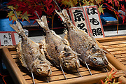 "Fish on skewers in Nishiki Market in Kyoto, Japan. Nishiki Market is a narrow five-block shopping street lined by 100+ shops and restaurants, in Kyoto, Japan. Known as ""Kyoto's Kitchen"", this lively retail market specializes in all things food related, like fresh seafood, produce, knives and cookware, and is a great place to find seasonal foods and Kyoto specialties, such as Japanese sweets, pickles, dried seafood and sushi. It all started as a fish wholesale district, with the first shop opening around 1310. The market has many stores that have been operated by the same families for generations. Nishiki Ichiba often gets tightly packed with locals and visitors."