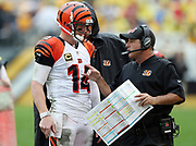 Cincinnati Bengals quarterback Andy Dalton (14) talks to Cincinnati Bengals offensive coordinator Ken Zampese on the sideline during the 2016 NFL week 2 regular season football game against the Pittsburgh Steelers on Sunday, Sept. 18, 2016 in Pittsburgh. The Steelers won the game 24-16. (©Paul Anthony Spinelli)