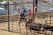 Jr, Team Penning Mariposa Fair 2015