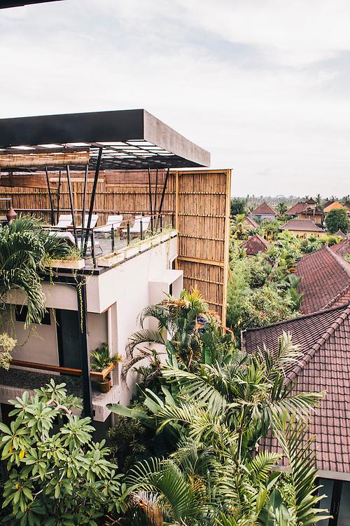 Roam community, Ubud. A global network of communal living spaces.