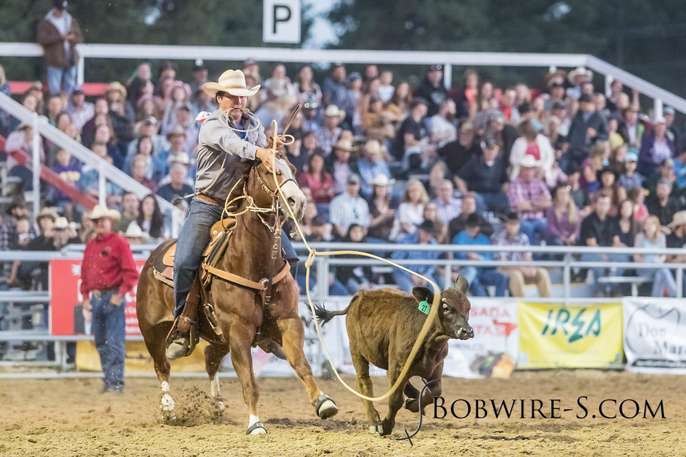Tie-down roper Justin Stuckey makes his run during the second performance of the Elizabeth Stampede on Saturday, June 2, 2018.