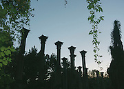 Windsor Ruins, Claiborne County, Mississippi.