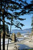 Washington: Olympic National Park