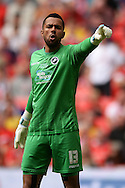 Jordan Archer of Millwall during the Sky Bet League 1 Play-off Final between Barnsley and Millwall at Wembley Stadium, London<br /> Picture by Richard Blaxall/Focus Images Ltd +44 7853 364624<br /> 29/05/2016