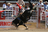 13: CALGARY STAMPEDE SADDLE BRONCS 1