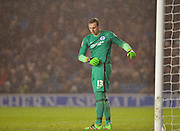 Brighton goalkeeper, David Stockdale (13) on a very wet night during the Sky Bet Championship match between Brighton and Hove Albion and Sheffield Wednesday at the American Express Community Stadium, Brighton and Hove, England on 8 March 2016. Photo by Adam Rivers.