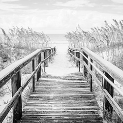 Beach boardwalk Pensacola Beach Florida black and white photo. Pensacola Beach is on Santa Rosa Island in the Emerald Coast region of the Southeastern United States. Photo is high resolution. Copyright ⓒ 2018 Paul Velgos with All Rights Reserved.
