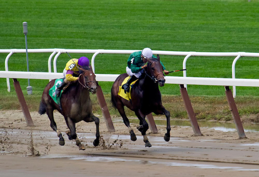 """Indy Sea"" with Ramon Dominguez aboard, defeats ""Silver Max"" in a maiden race."