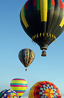 Morning launch at the Crown of Maine Balloon Fair, Presque Isle, Maine.