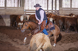April 29 2017 - Minshall Farm Cutting 1, held at Minshall Farms, Hillsburgh Ontario. The event was put on by the Ontario Cutting Horse Association. Riding in the 25,000 Novice Horse Non-Pro Class is JP Gravel on Timothy Taz owned by the rider.