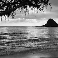 Kualoa Sunrise, Mokolii Island, Hala Tree